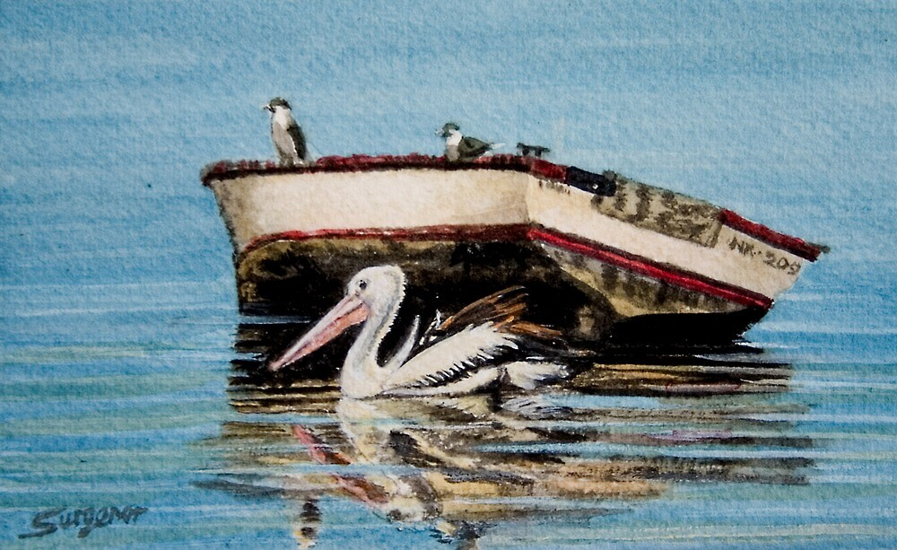 Pelican and friends by Freda Surgenor