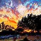 Sunset in February by Cathy Jones