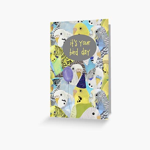 Wellensittich Parakeet Geburtstagskarte Grußkarte