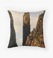 Tasmania, Eco Widerness Tours Cruises, Port Arthur Throw Pillow