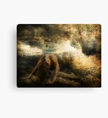 Weight of a Feather Canvas Print