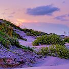 South Padre Island National Park  by Cathy Jones