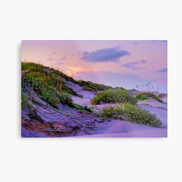 South Padre Island National Park  Metal Print
