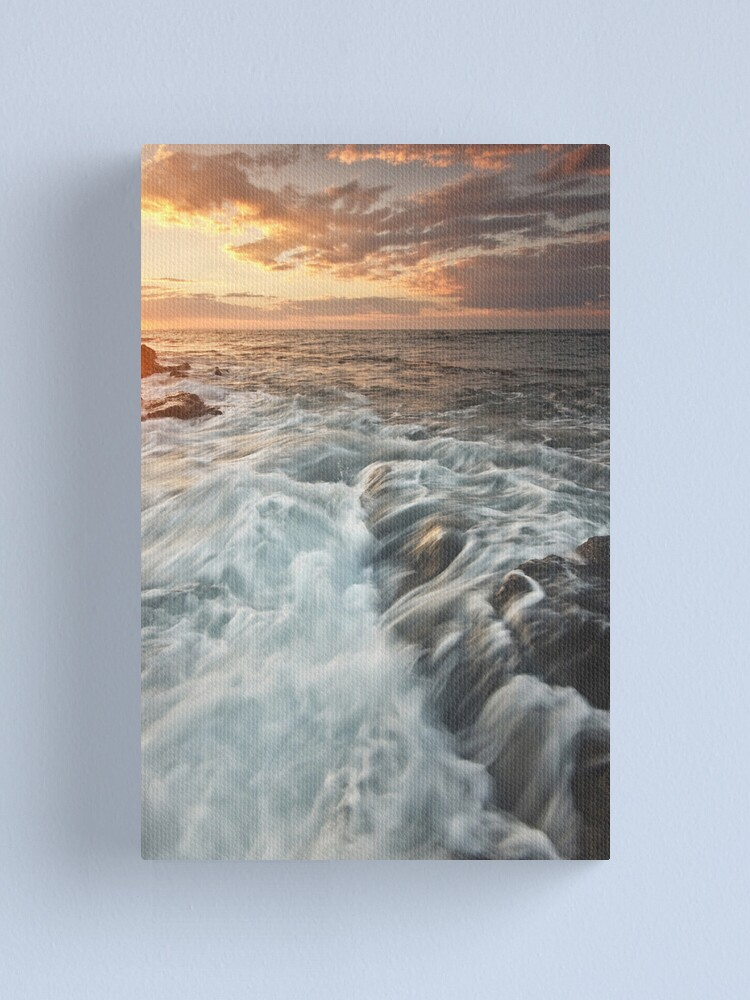 Alternate view of A Little Side Motion Canvas Print