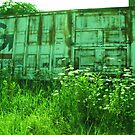 Distressed Freight Train Car with wildflowers by megan9mm