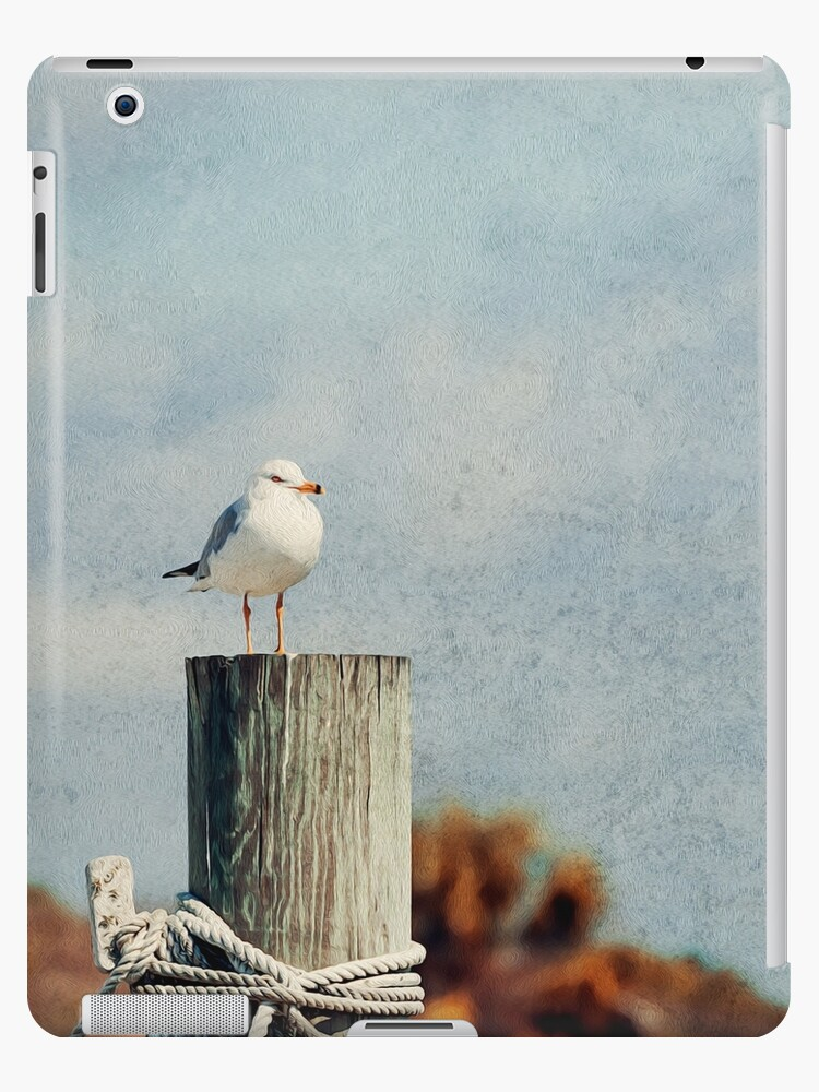 Vintage seagull on wooden post by nscphotography