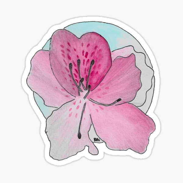 rhododendron indicum azalea Sticker