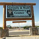 Grizzly Bear & Wolf Discovery Centre, West Yellowstone. by Mywildscapepics