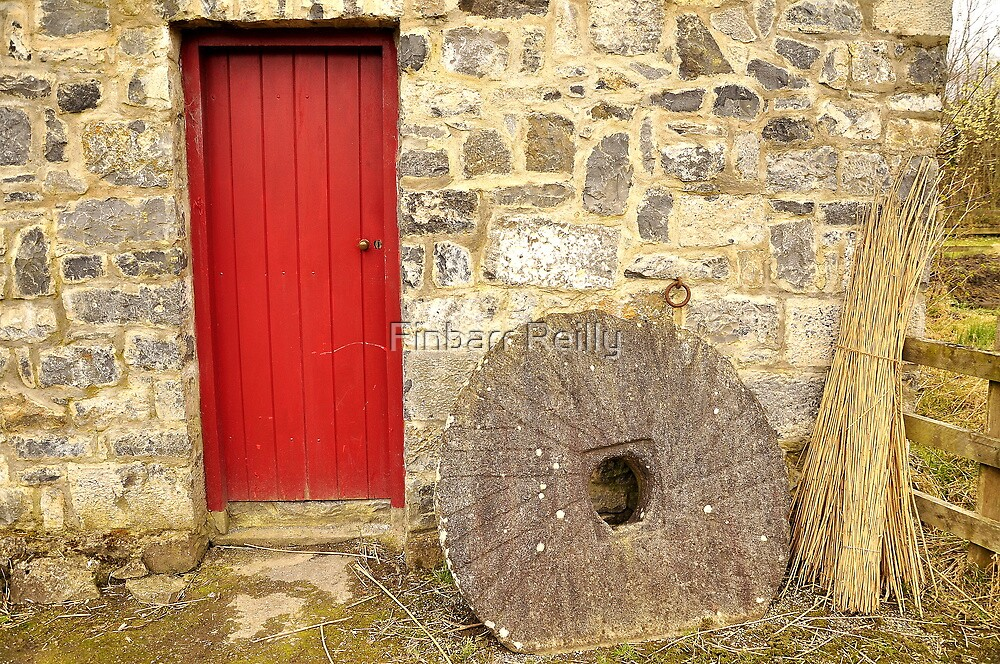 Country scene by Finbarr Reilly