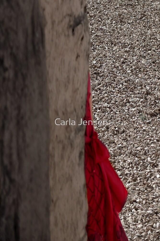 Secretive by Carla Jensen