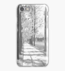 Tree lined road iPhone Case/Skin