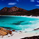 Thistle Cove by Sheldon Pettit