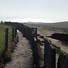 Following the Cliffs by Jordyn Kirk