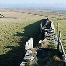 Stacked Stone Walls by Jordyn Kirk