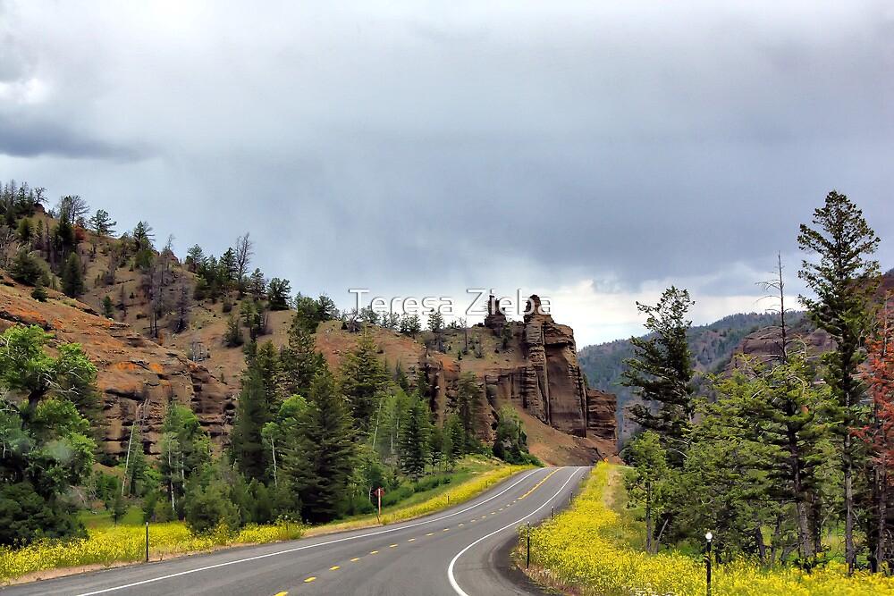Yellowstone Road, Wyoming, USA by Teresa Zieba