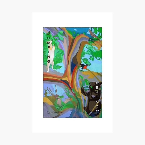 Jumping Juniper giclee with borders Photographic Print