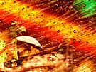Rain Magic by Veronica Schultz