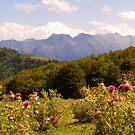 The Ariége Pyrenées by WatscapePhoto