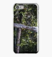 """Alligators may live here"" iPhone Case/Skin"
