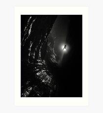 Looking down Titan's Great Cave Art Print
