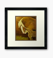 I love You So Mom! Framed Print