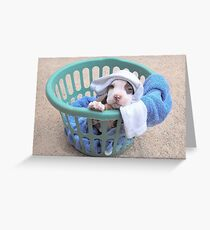 What Laundry? Greeting Card