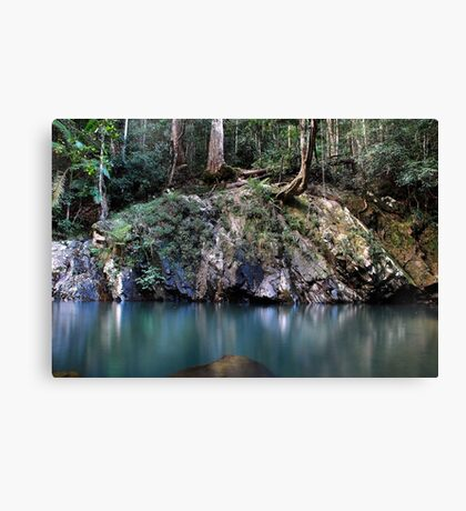 MYSTERIOUS - LOOKING Canvas Print