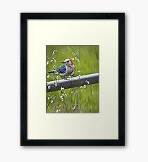 I Love Spring Framed Print