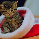Where Did Santa Go? by KS-Photography