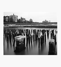 at the water's edge Photographic Print