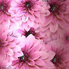Decorative Hot Pink Dahlias With Nostalgic Touch by hurmerinta