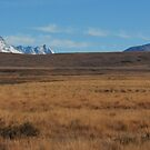 Of distances shape the warm recluse, Southern Alps by Robin Smith