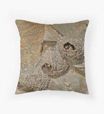cliff dwellers Throw Pillow