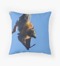 Flying Fox at rest Throw Pillow