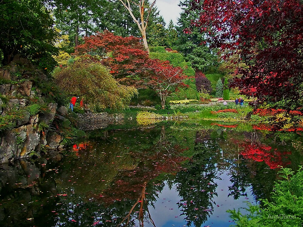 Butchart Gardens in the Fall by AnnDixon