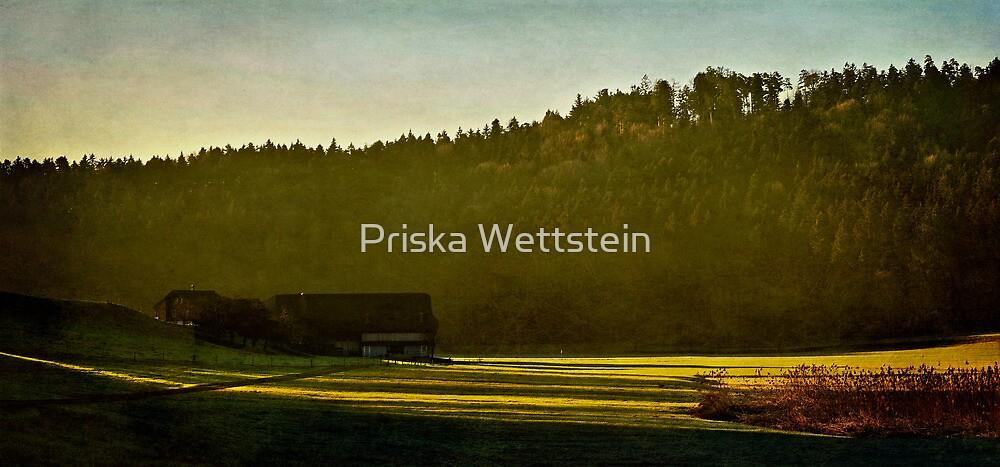 Daybreak by Priska Wettstein