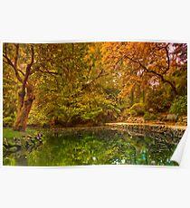 Autumn at Alfred Nicholas Memorial Gardens Poster
