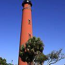 Ponce Inlet Lighthouse by Deborah  Benoit