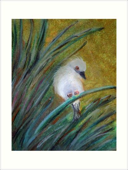 Bird on grass by Kostas Koutsoukanidis