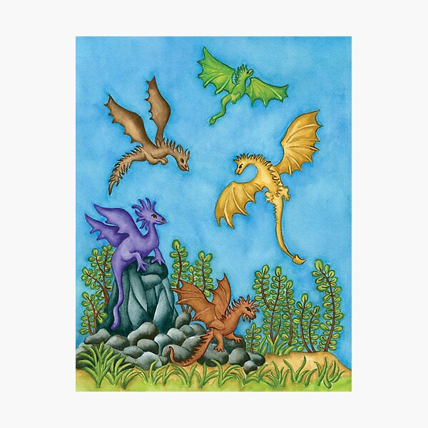 Dragons Learning to Fly Photographic Print