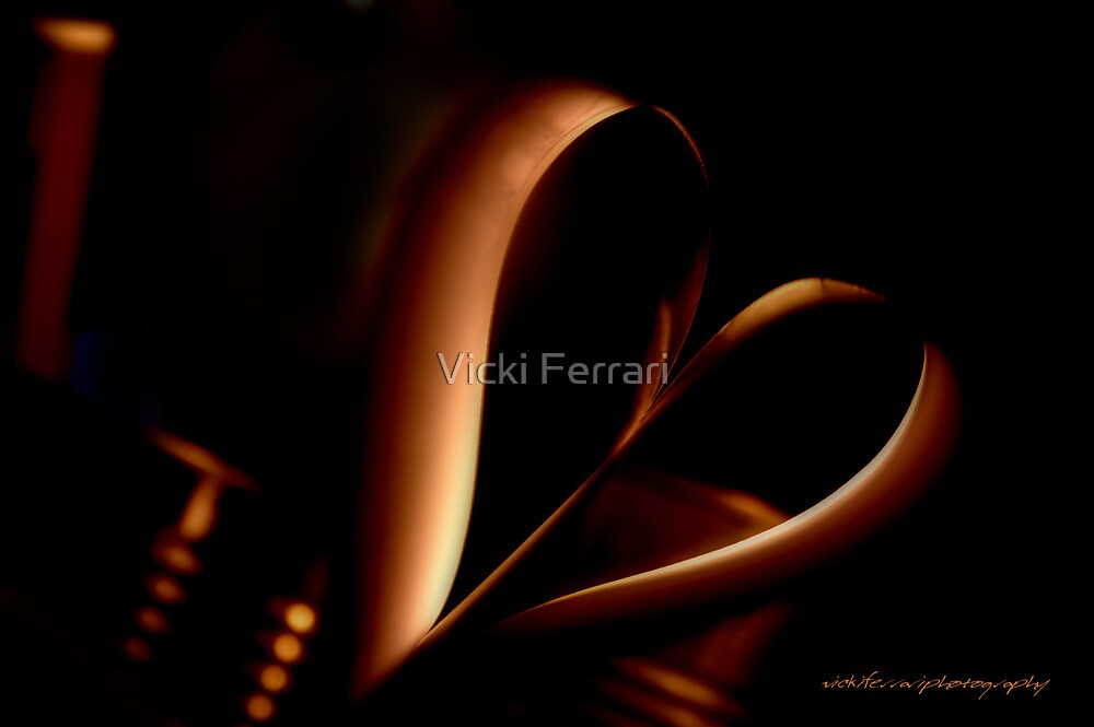 TWISTED HEART Askew © Vicki Ferrari Photography by Vicki Ferrari