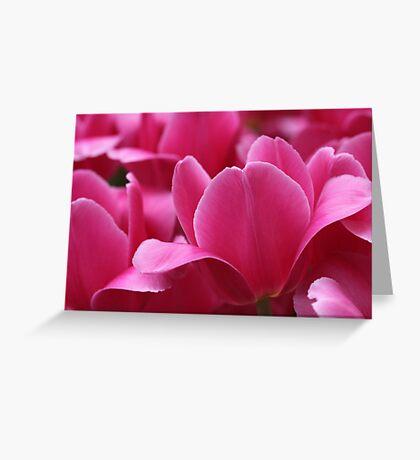 Super Pink Greeting Card