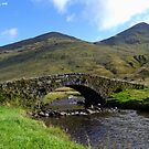 Wee Bridge Over The River Croe by Kevin Cotterell