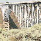 Bridge over the Rio Grande. by Mywildscapepics