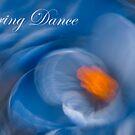 Spring Dance - Crocus Flower  by JHRphotoART