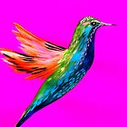 Pink mit Kolibri von cathyjacobs