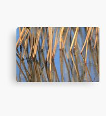 The power of simplicity 1 Canvas Print