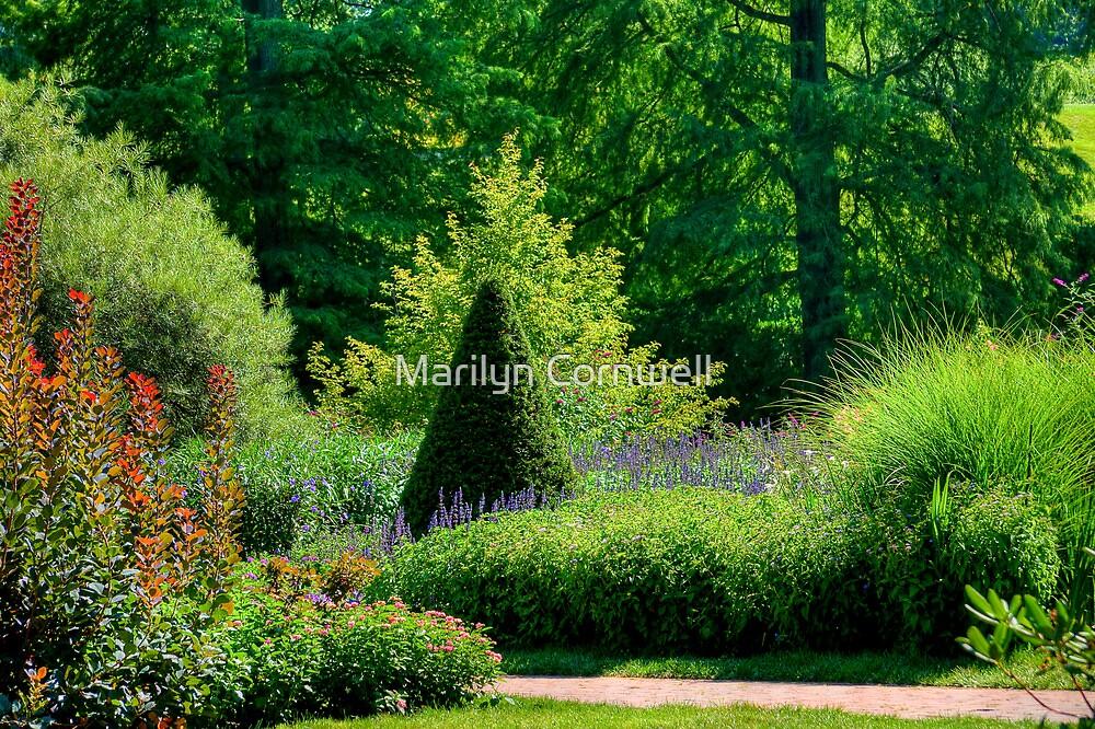 Longwood's Flower Walk by Marilyn Cornwell
