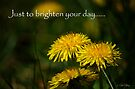 Just to brighten your day by Vicki Pelham