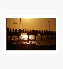 Fishing Pier at Fort Dr Soto Park Photographic Print
